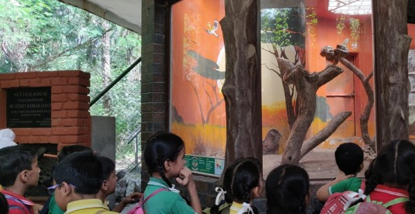 Trip to Chhatbir Zoo
